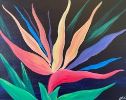 New Event - Bird of Paradise. Ages 7+