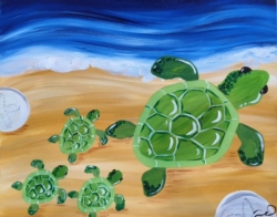 New Event - Sea Turtles. Ages 7+