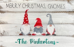 New Event - Custom Wood Sign Class. Holiday Glitter Gnomes!*