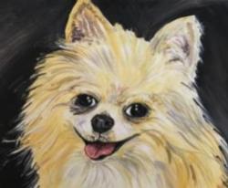 New Event - Paint Your Pet