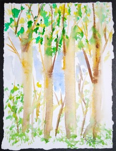 Art for Sale - Pines