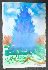 Art for Sale - Blue Pine