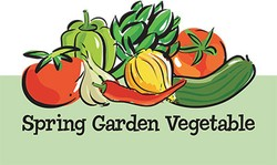Dips - Spring Garden Vegetable