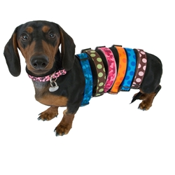 Collars - Walk-E-Woo Polka Dot Collars