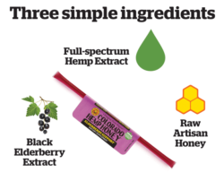 Buy Colorado Hemp Honey - Colorado Hemp Honey Raw and Elderberry individual sticks [click to enlarge]