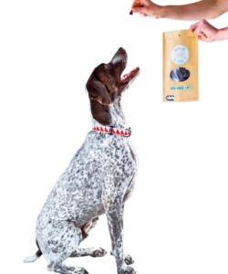Winnie Lou-The Canine Co - Healthy Treats - Bison Burger Treats-2.5 oz [click to enlarge]