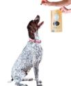 Winnie Lou-The Canine Co - Healthy Treats - Bison Burger Treats-2.5 oz